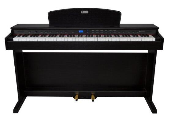 Williams Rhapsody 2 88-Key